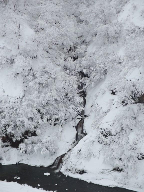 第二駐車場から見える滝
