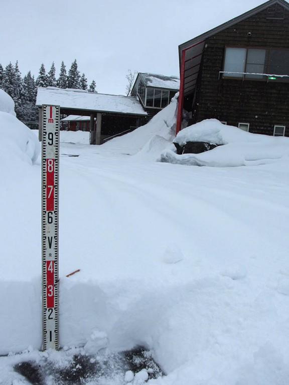 今朝の松之山の積雪は31㎝でした。