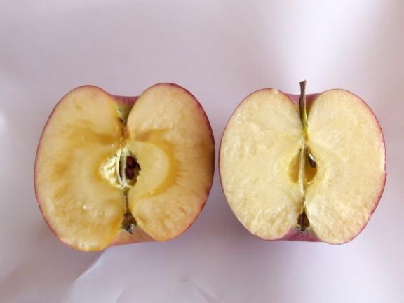 今回仕入れたリンゴです。 左側から秋映/ジョナゴールド/北斗/シナノスイート/紅玉
