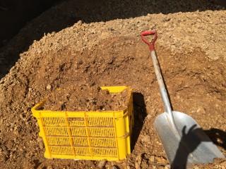 きのこ工場で廃菌床をもらってきました。