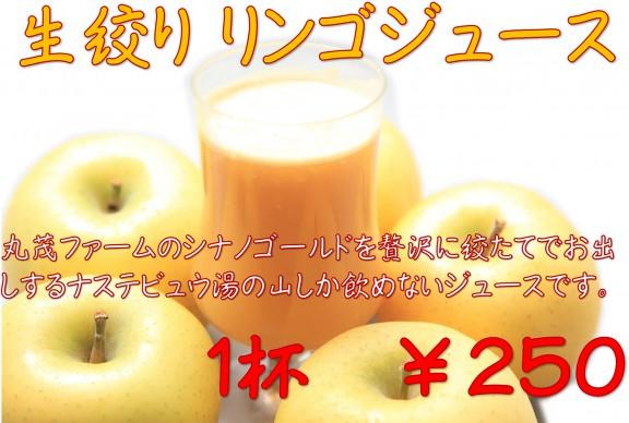 リンゴジュース-1