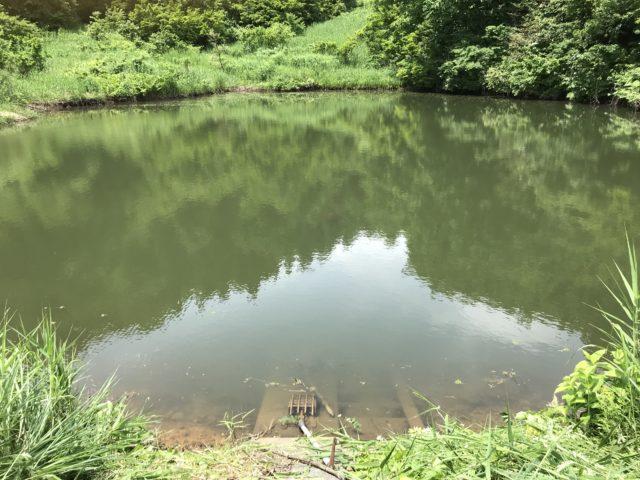 終点はこのため池です。